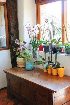 Orchid B&B Saint jacob close to Rochefort en terre, Redon